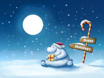 Quelques photos des Vacances de Noël :) !!